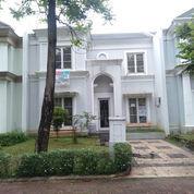 Sewakan Murah Rumah Cantik Luas Kosong Cluster Rolling Hills Inglewood (23993535) di Kab. Tangerang