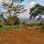 Tanah Kavling Kota Wisata Batu Tanpa Bunga (Tanpa Bank) (23993723) di Kota Batu