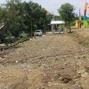 Kavling Murah Di Kaliwungu (24004687) di Kab. Kendal