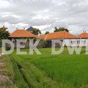Tanah Jalan Utama Bumbak Umalas Kerobokan Dekat Berawa Canggu Semer (24013027) di Kab. Badung