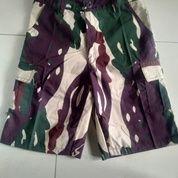 Ready Stok Celana Pendek Loreng (24024951) di Kota Bandung