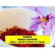 ORIGINAL Bunga Saffron Untuk Kista Jakarta Bandung, (24028119) di Kota Bandung