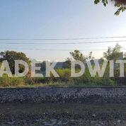 Tanah Bypas Ngurah Rai Pesanggaran Sanur Denpasar (24046715) di Kota Denpasar