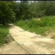 Tanah Murah Lt 2322m Ld 25m Di Utara Pasar Sungapan