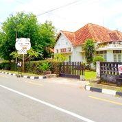Rumah Antik Kota Baru Cocok Buat Kantor Dan Hotel (24102891) di Kota Yogyakarta
