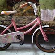 Sepeda Anak Flord Dengan Keranjang,Mulus Jarang Dipakai Gan (24105255) di Kota Semarang