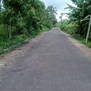 Tanah Di Gangga Rempek Lombok Utara (24131719) di Kab. Lombok Utara