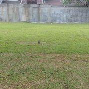 Hadap Timur Kavling Hijau Sejuk Palma Alam Sutera (24132475) di Kota Tangerang Selatan