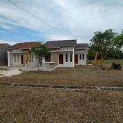 MURAH BUKAN MURAHAN (24154031) di Kota Pekanbaru
