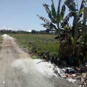Tanah 250M2 Jln. Carik Pura Demak Denpasar Barat