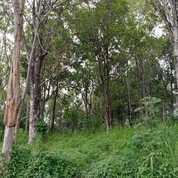 Tanah Kotak Di Cileunyi Kulon (24714235) di Kota Bandung