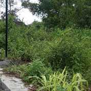 ASET NAIK Berlipat, Investasi Menjanjikan Tanah Di Jogjakarta