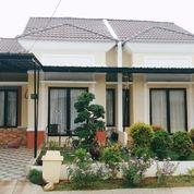 Panorama Bali Residence Rumah Murah Dp 5jt All In Di Parung Ciseeng Bogor (24807103) di Kab. Bogor