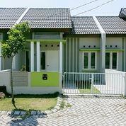 Tanpa DP + FREE Biaya Type AZALEA 36/90 Taman Anggun Sejahtera 5 Sidoarjo (24876771) di Kab. Sidoarjo