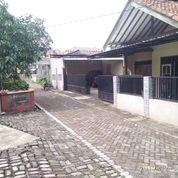 Rumah Luas Strategis Di Kota Ungaran, Semarang (25031887) di Kota Semarang