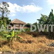 Tanah Jalan Utama Tengah Tegal Cupek Umalas Bumbak Kerobokan (25121115) di Kab. Badung