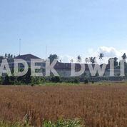 Tanah Jalan Utama Bypas Ida Bagus Mantra Keramas Gianyar Bali (25218759) di Kab. Gianyar