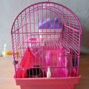 Kandang HAMSTER Jumbo Burung Tikus Kelinci Sugarglider (25295115) di Kota Medan