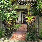 Villa Di Badung Bali Full Furnish