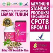 Sliming Herbal Pembakar Lemak Tubuh Extra Jati Belanda, Kunyit 50 Kapsul