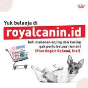 Royal Canin Online Promo + Free Ongkir via GoSend (25383131) di Kota Jakarta Selatan