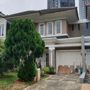 Murah Rumah Di Sutera Olivia Alam Sutera Tangerang (25447291) di Kota Tangerang