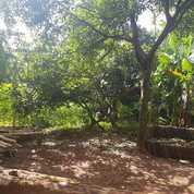 Tanah Murah Cocok Buat Kost-Kosan Atau Kontrakan Nempel Bintaro (25458835) di Kota Tangerang Selatan