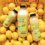 Sari Lemon Organik Jenis California 100% Murni Tanpa Pengawet (25557847) di Kota Bandung