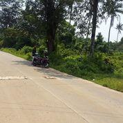 Tanah Murah BU Di BSD Tangerang (25596019) di Kota Tangerang Selatan