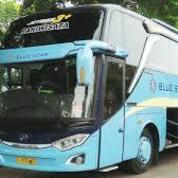 BLUE STAR Bus Pariwisata (25614939) di Kota Jakarta Barat