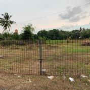 Tanah Murah Mangku Jalan Nasional, Yogyakarta (25624583) di Kota Yogyakarta