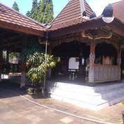 Rumah Etnik Berarsitektur Jawa Modern Jl Gedongkuning Kotagede (25631499) di Kota Yogyakarta