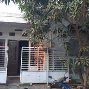 Rumah Di Perum Gcc Cikarang Utara Full Renovasi, Sdh Di Dak Atas, Dekat Dg Sgc, Stsiun (25633339) di Kab. Bekasi