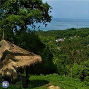 Tanah Di Bukit Melase Batulayar Lombok Barat T054 (25642159) di Kab. Lombok Barat