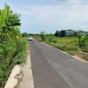 Tanah Mangku Jalan Di Godean Yogyakarta (25649919) di Kota Yogyakarta