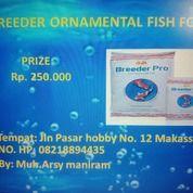 The Best Ornamental Fish Food (25663135) di Kota Makassar