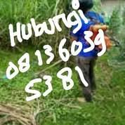 Jasa Potong Rumput Banda Aceh (25790491) di Kota Banda Aceh