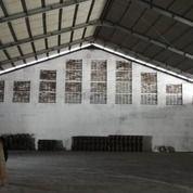 GUDANG 900 METER HANYA 20 MENIT EXIT TOL WARU BEBAS BANJIR (25797287) di Kota Surabaya