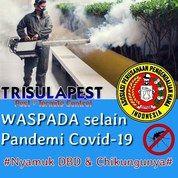Jasa Fogging Nyamuk DBD (25800347) di Kota Depok
