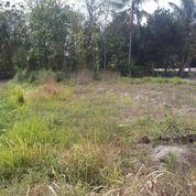 Tanah Murah Strategis Di Jl Kaliurang Km.12 Dekat Kampus UII (25821615) di Kab. Sleman