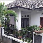 Rumah Asri Dan Luas Di Lempongsari Utara Hotel Indolux Monjali (25831879) di Kab. Sleman