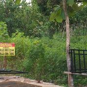 Prospek Untuk Kos Tanah Tembalang Bulusan Undip (25887175) di Kota Semarang