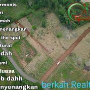 Tanah Kavling Cocok Buat Villa (25895079) di Kab. Bogor