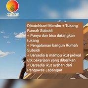 DIBUTUHKAN MANDOR DAN TUKANG (25900551) di Kab. Tangerang