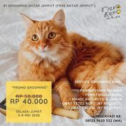 Neko-Kepo Cat Cafe GROOMING PROMO (25921795) di Kota Malang