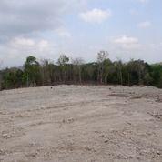 Tanah Kavling Sedayu Murah (25976543) di Kota Yogyakarta