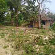 Tanah Pajangan Yogyakarta (25977127) di Kota Yogyakarta