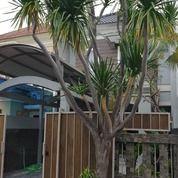 Rumah Amerikan Classic Bagus Siap Pakai Di Pantai Mentari (25982099) di Kota Surabaya