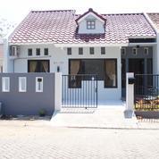 Bukit Palma Modern Minimalist Bonus 1 Tahun Sewa (26017371) di Kota Surabaya