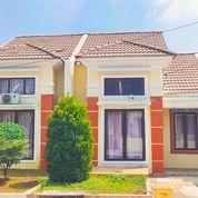 Rumah Ku Di Panorama Bali Residence Siap Huni Dp 5jt All In Dekat Ke Jakarta (26024015) di Kota Bogor